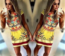 Printed Slim Dress
