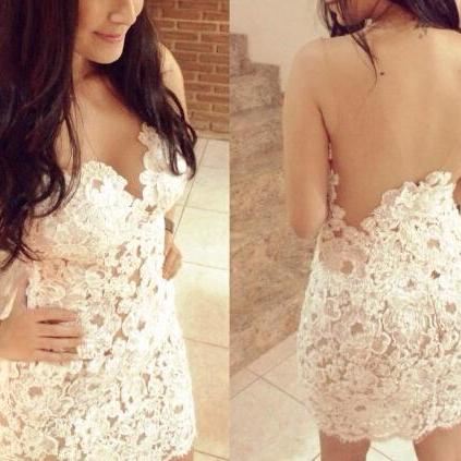 Sexy Embroidered Lace Dress